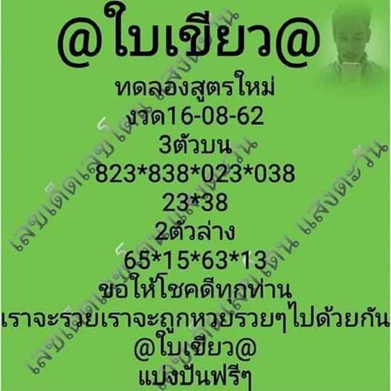หวยใบเขียว160862